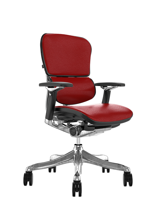Ergohuman Plus Leather Office Chair no Head Rest