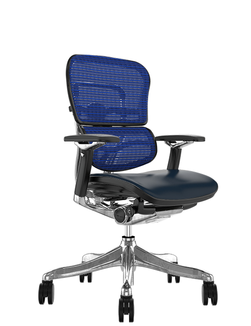 Ergohuman Plus Leather Seat, Mesh Back Office Chair no Head Rest