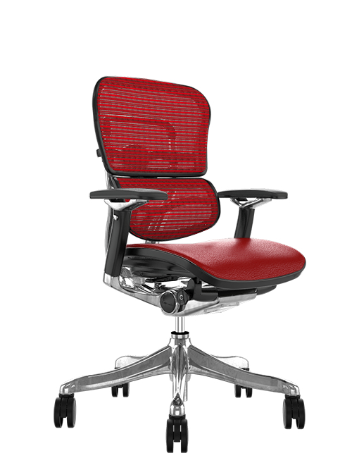 Ergohuman Red Leather Seat, Red Mesh Back Office Chair
